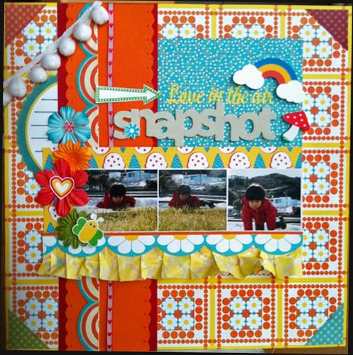 snapshot 2011